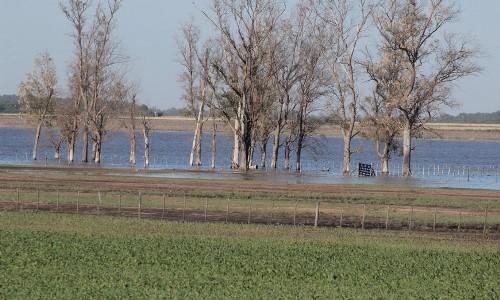 Resultado de imagen para inundaciones y napas en el sur de cordoba
