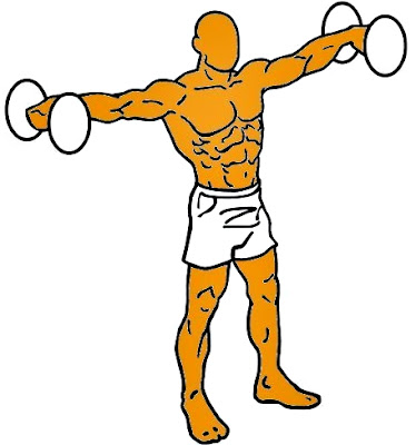 Hombro apertura lateral mancuerna hombre ejercicio