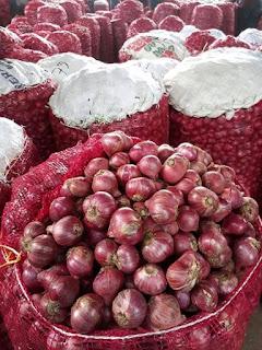 Bawang merah solok