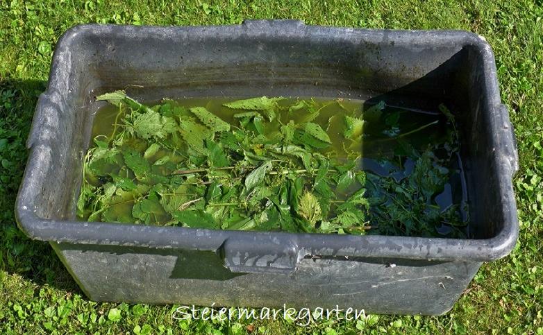 Brennnesseljauche-Steiermarkgarten