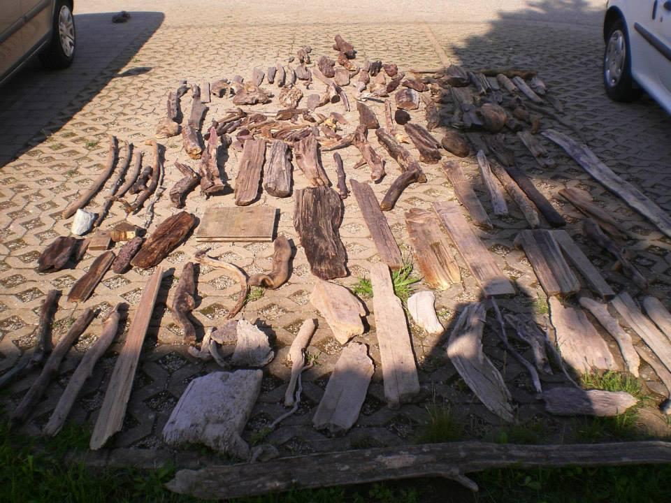 Holz Trocknen Ohne Risse treibholz natur kunst diy drechsel holz rissfrei trocknen schonend