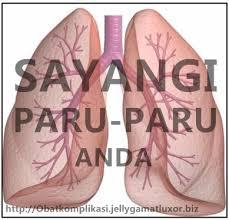 Mengobati Penyakit Paru Paru Tbc Parah