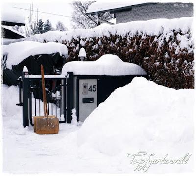 Gartenblog Topfgartenwelt Winter: Schneehaufen vor Haus