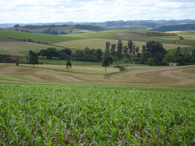 Resultado de imagem para imagens Prazo para inscrição no Cadastro Ambiental Rural termina no próximo domingo