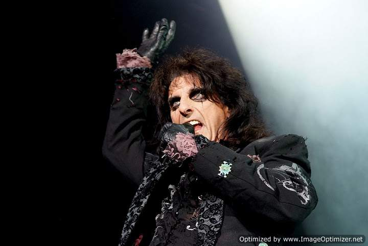 From The Horses Mouth The Frank Zappaalice Cooper Connection A