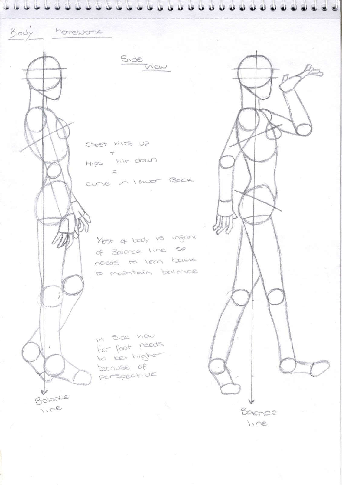 Drawing For Animation Body Proportions Sem 1