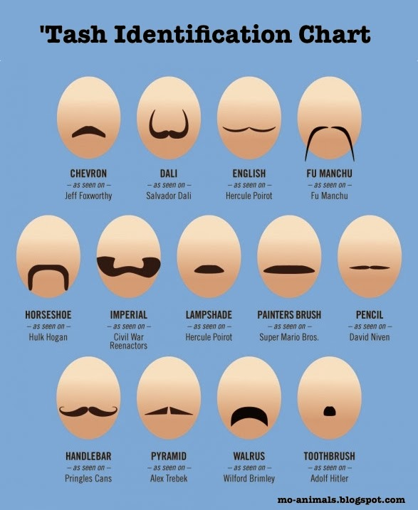 mo-animals Moustache styles handy identification chart