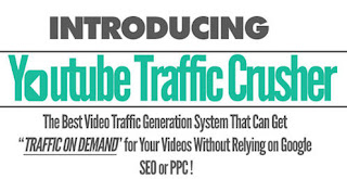Download Niche Traffic Crusher + OTO