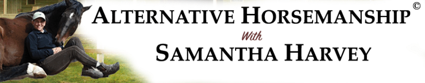 Alternative Horsemanship with Samantha Harvey Remote Horse Coach Blog and Horse Articles