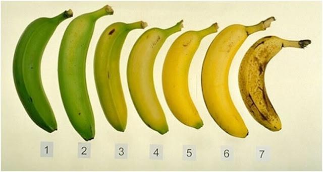 نضج الموز