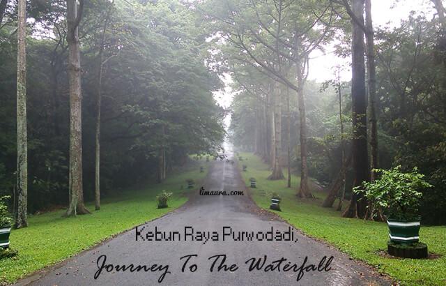Cerita Weekend : Kebun Raya Purwodadi, Journey To The Waterfall