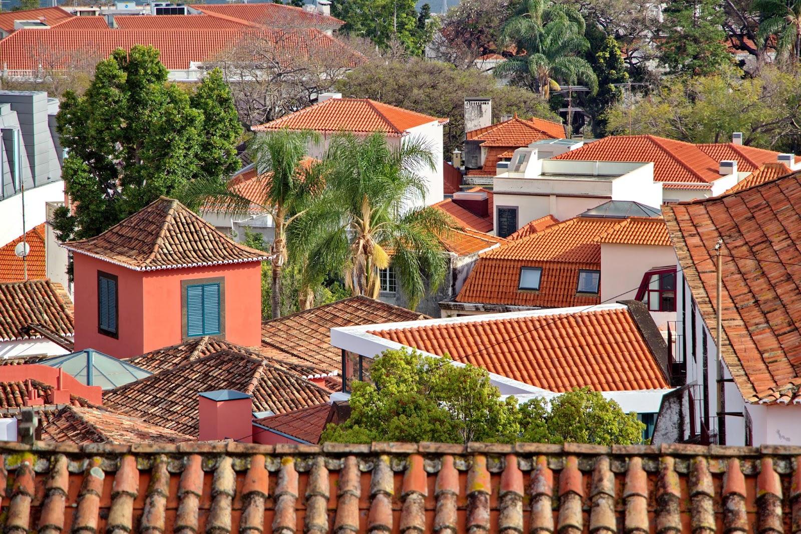 telhados que protegem história