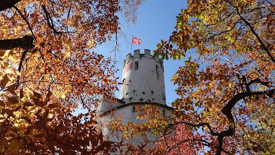 Burg Neu-Bechburg