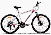 Sepeda Gunung Pacific Masseroni 7.0 21 Speed 26 Inci