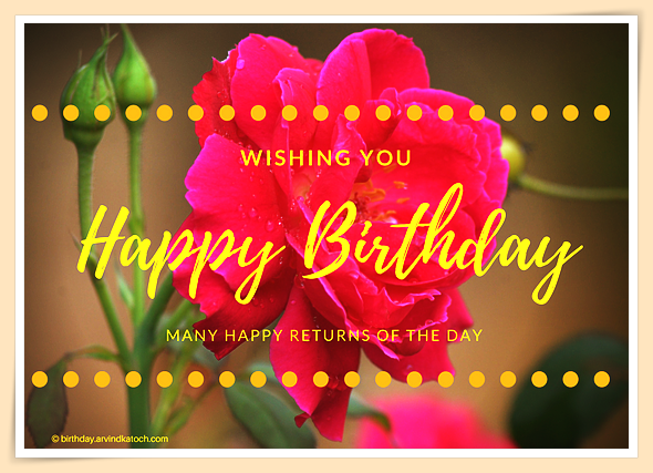 Simple, Birthday Card, Rose card, happy, returns, day,