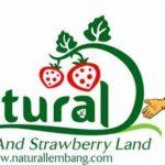 Lowongan Kerja Koki Restoran Di Sunda Natural Resto Bandung