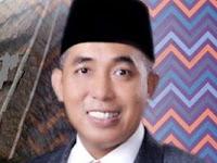 Profil dan Biodata Mori Hanafi