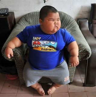 Memes de gordos y gordas causan gordura obesidad niño obeso