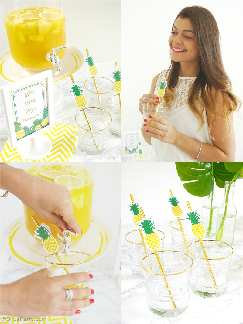 Party Like a Pineapple Birthday Bar & Drinsk Station - BirdsParty.com