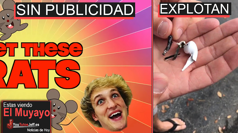 Logan Paul Electrocuta Ratas y Youtube actúa, Facebook Dislike, Airpods Error, Amazon | El Muyayo