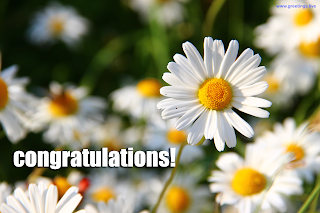 congratulations greetings flowers