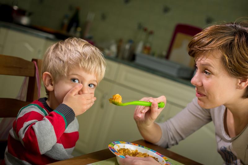 Anak Yang Susah Makan