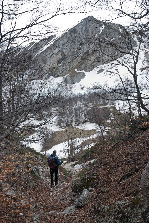 Scendendo nel bosco di valle Cerchiata
