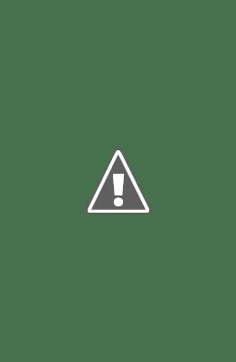 Cố võ sư Phạm Thi