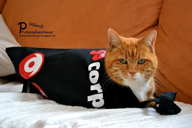Katze Mimi liegt in einer neuen Tragetasche von corpuls