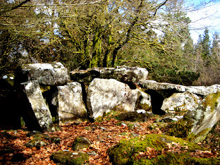 Court Tomb Irelands Ancient East