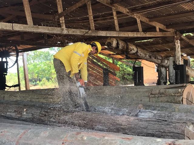 PF apreende 56m³ de madeira ilegal durante operação no Maranhão