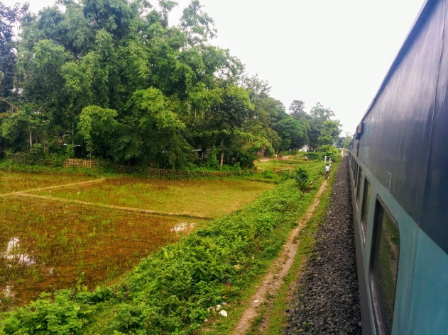 Lush Indian countryside and Vivek Express train