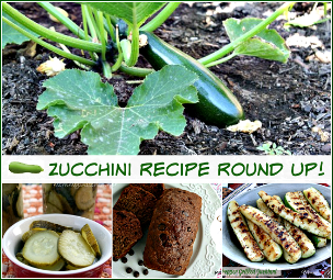 Garden Zucchini Recipes