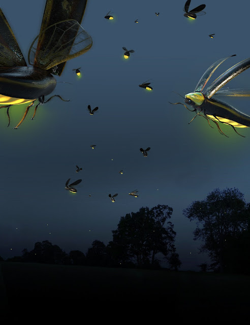 Low Poly Lightning Bugs