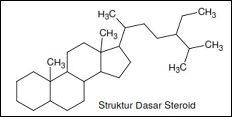 Perbedaan steroid dan sterol anabolic steroids origin