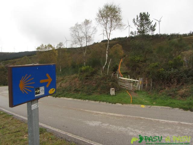 Camino de Santiago cerca de Bustelo del Camín