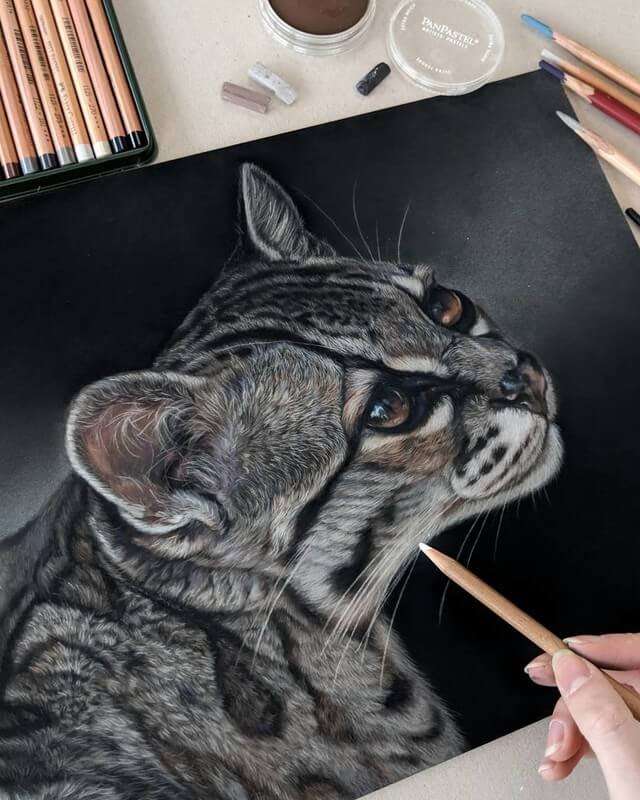 09-Wild-Cat-Tatjana-Bril-Pastel-Drawings-of-Detailed-Animals-www-designstack-co