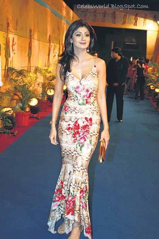 Indian Actress Bollywood Actress Shilpa Shetty Hot And -9171