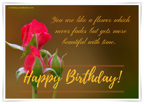 flower, Rose, Bud, Beautiful, Time, Birthday, Card,