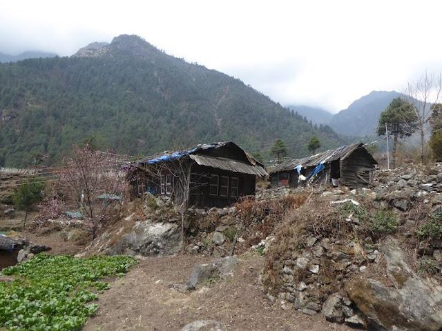 baracche lungo il sentiero per Phakding