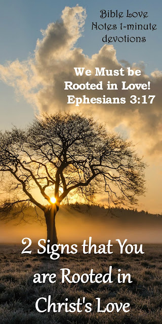 Rooted and Established in Love - Ephesians 3:17