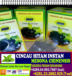 Cincau Hitam, Cincau Hitam Bubuk, Grass Jelly Powder, +6281.232.882.925