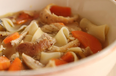 Nourishing chicken noodle soup with shredded chicken, carrots and plenty of egg noodles