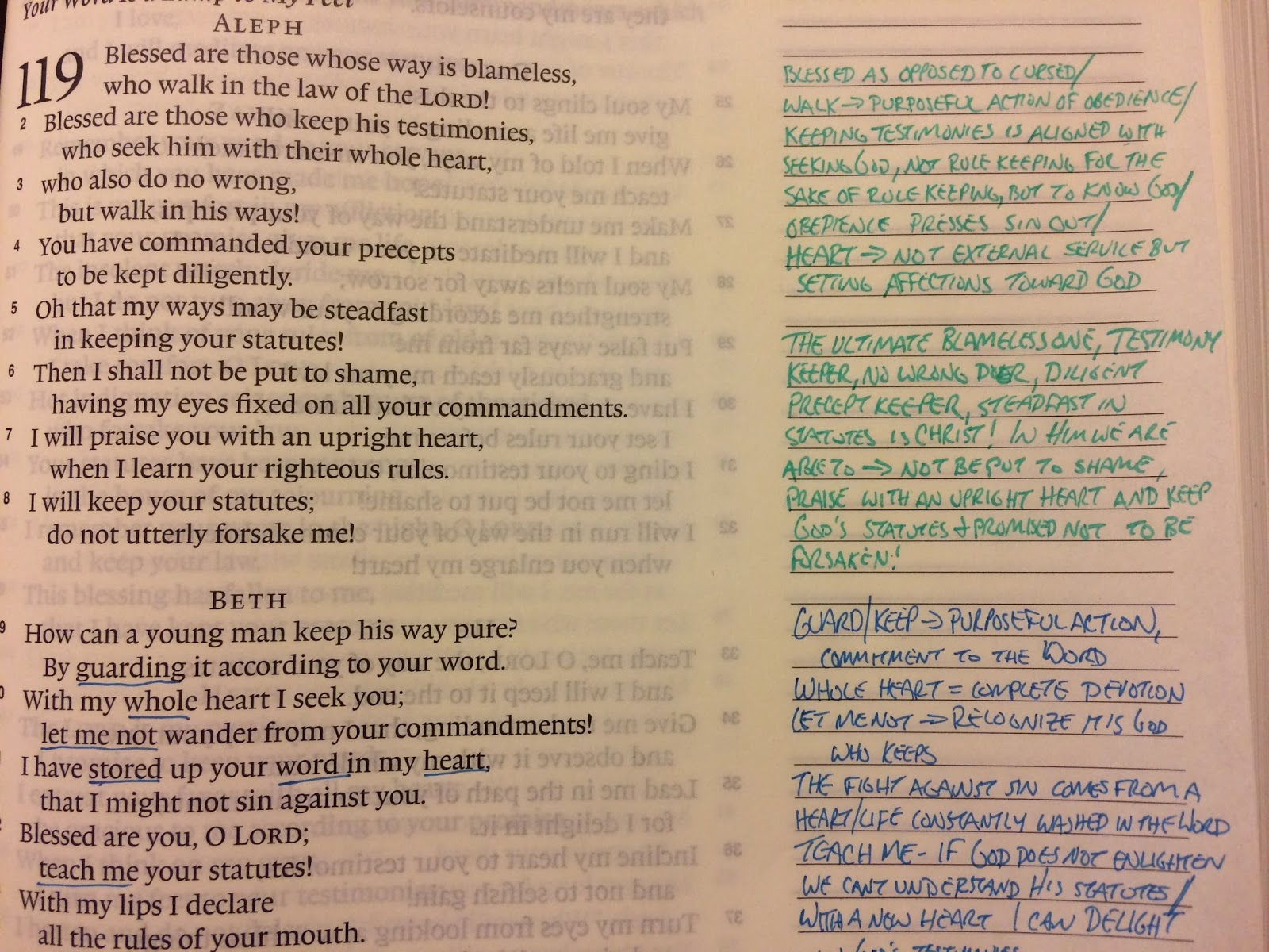 ESV Journaling Bible   Parker's Reviews: