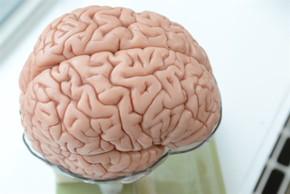 Local chemotherapy delivered directly to the brain preserves immune