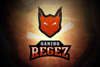 Regez Gaming (aekro)