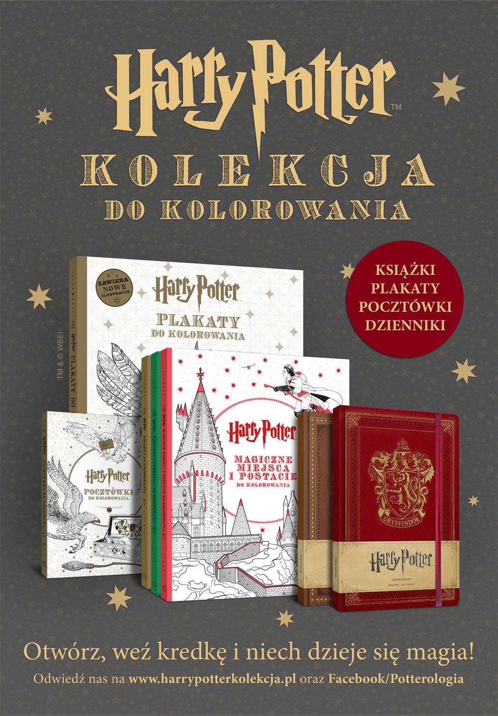 Zatracone W Innym świecie Weekend Z Harrym Potterem 22 23