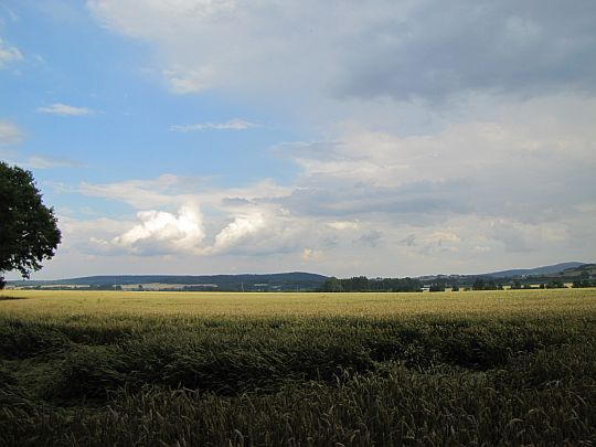 Panorama doliny Trzebinki.