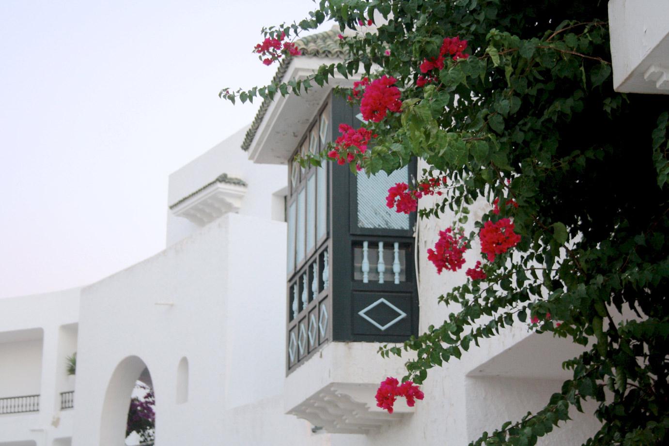 TUNISIA PHOTO DIARY III. 9
