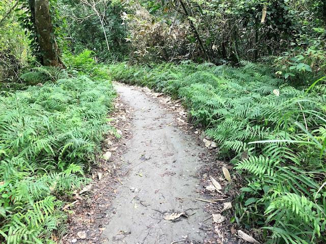 shakadang trail taroko gorge taiwan